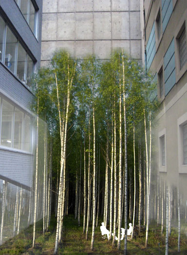 The Infinity Forest (Laneways, By George!)